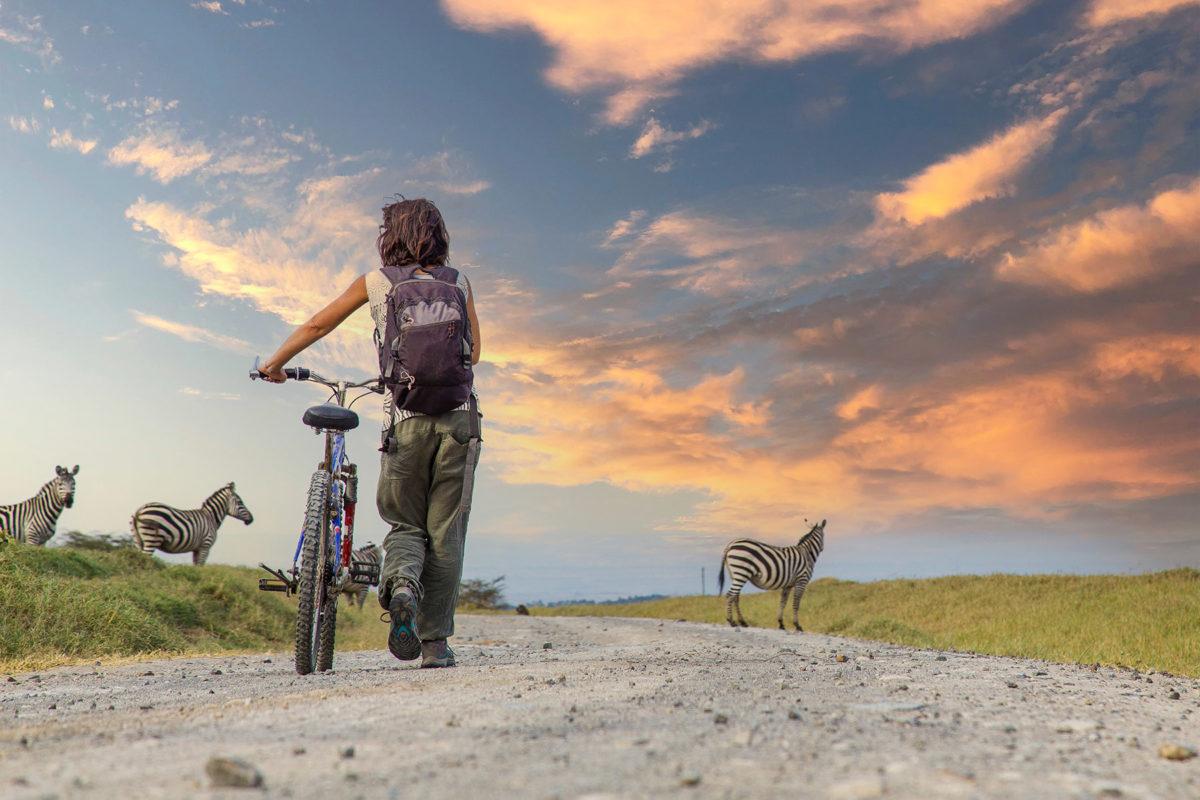 Bicycle Rent in Lake Manyara
