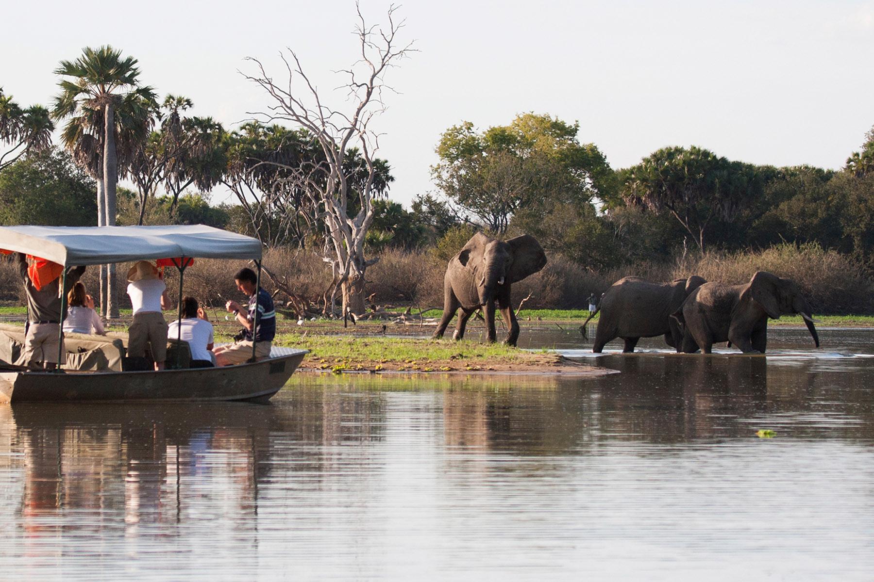 Nzerakera lake, Selous Game Reserve / Tanzania  January 25th 2007: Tourists watching a herd of elephants drinking while on a boat safari.