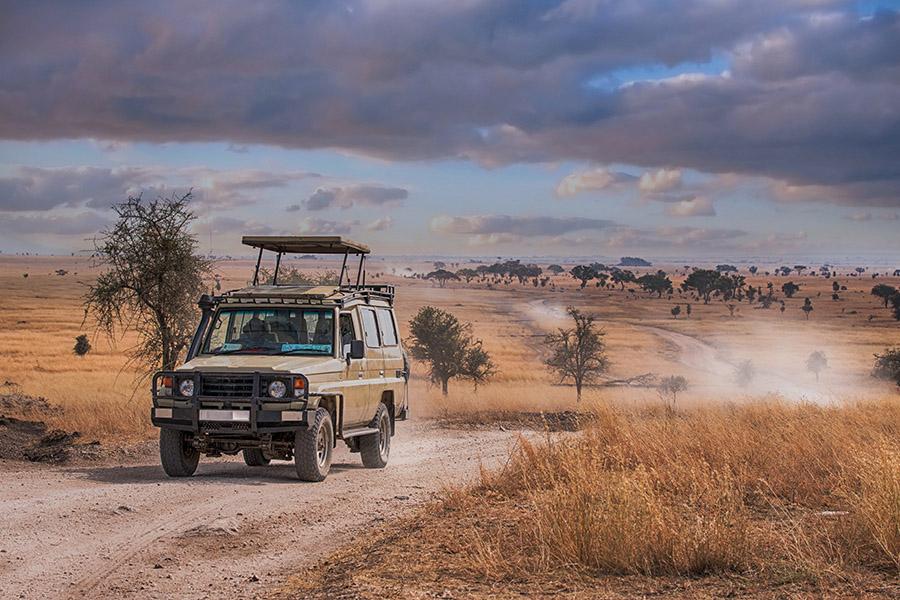 Private Safari Game Drive