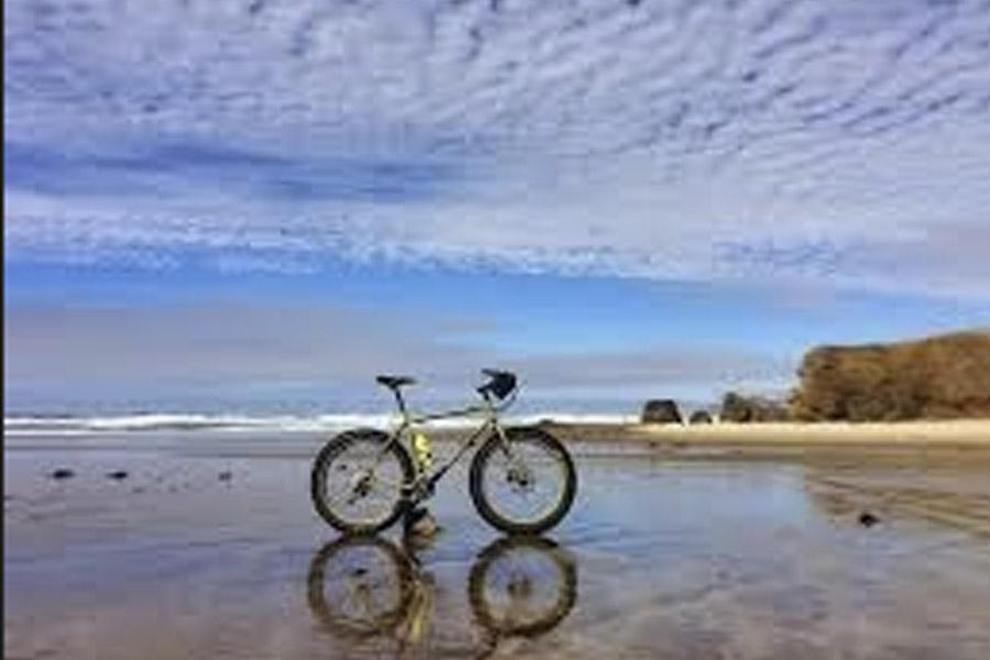 Fat Bike Safari in Jangwani