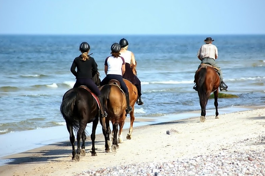 Horse back riding Nungwi (morning beach ride 90 min.)