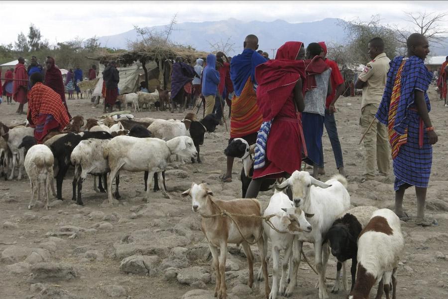 Maasai market tour Mto wa Mbu – Thursday only