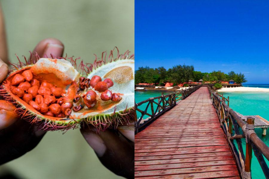 Spice Tour and Prison Island