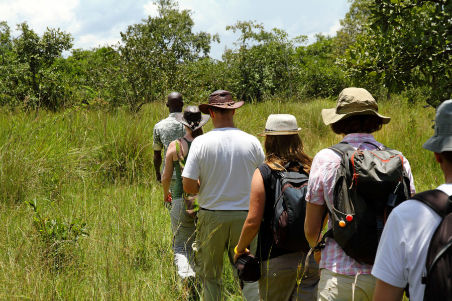 Walking safari + serengeti sundowner