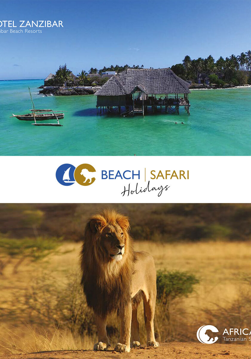 beach-safari-brochure-cover