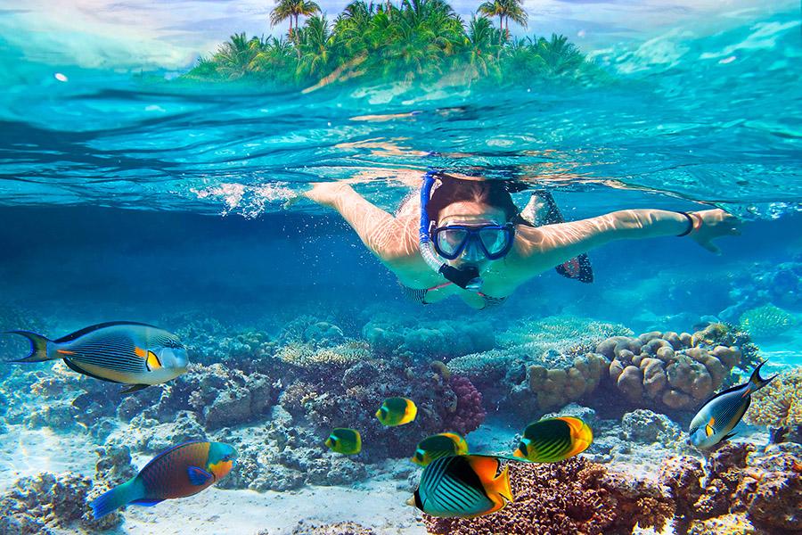 zanzibar excursion snorkeling